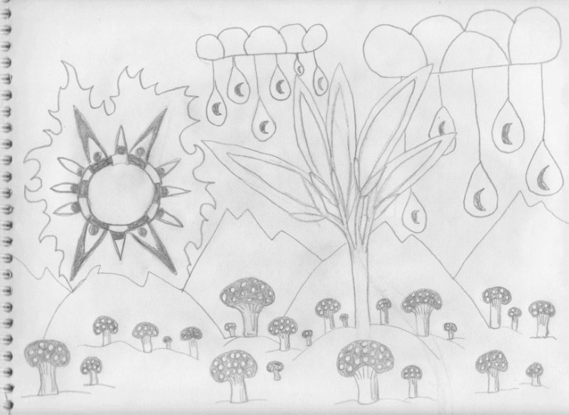 Sun Mushrooms